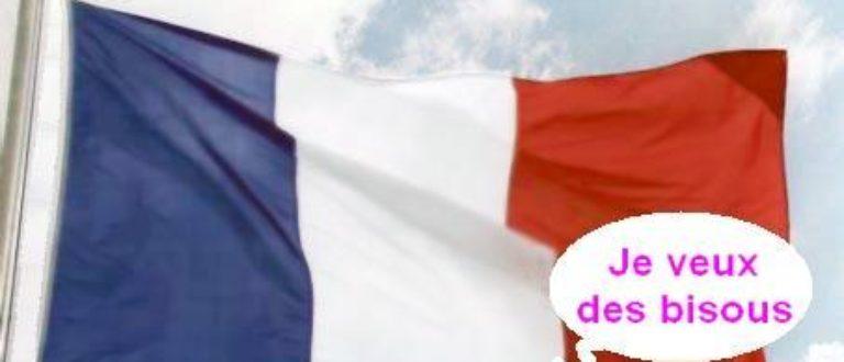 Article : Les Maliens n'aiment pas la France, mais aiment ses milliards
